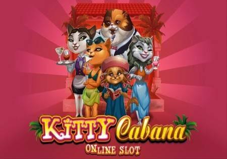 Kitty Cabana – mambo ya paka yanaleta mapato makubwa!