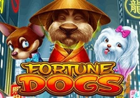 Fortune Dogs katika uhondo mtamu sana wa kasino ya mtandaoni!