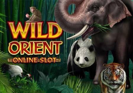 Wild Orient – utamu wa msitu katika sloti mpya ya video!