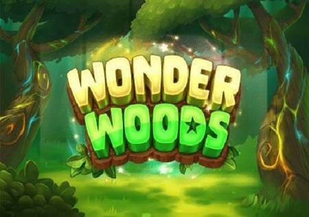 Wonder Woods inakuongoza katika msitu wa ajabu unaoficha maajabu kibao!