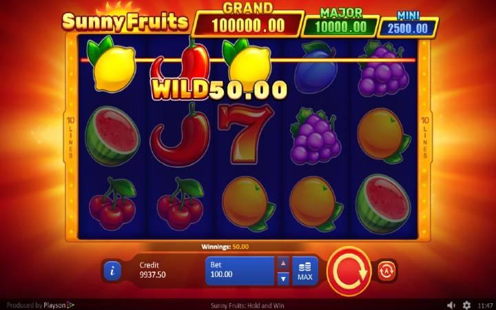 Alama za sloti ya Sunny Fruits: Hold and Win
