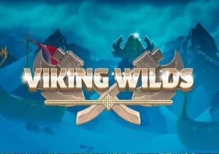 Viking Wilds – uhondo wa kasino wenye bonasi kubwa!