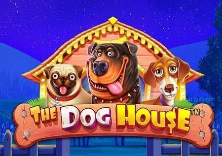 The Dog House – mbwa wanaofanya kazi vizuri sana wanaleta raha inayokumbukwa!