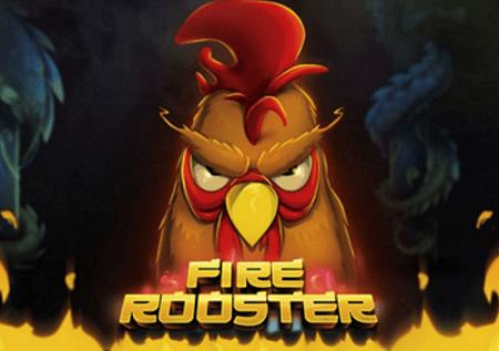 Fire Rooster – jogoo wa moto analeta bonasi zinazolipuka!