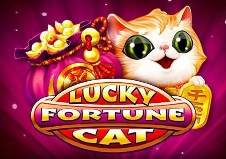 Lucky Fortune Cat – paka wanaweza kukuletea jakpoti