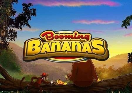 Booming Bananas inakuchuka kwenda kwa oasis iliyojaa bonasi!
