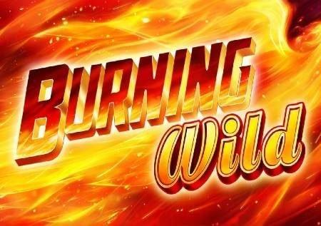Burning Wild – jokeri wanaleta raha ya moto!