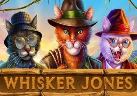 Whisker Jones – mchanganye Jones ukiwa na begi la bonasi