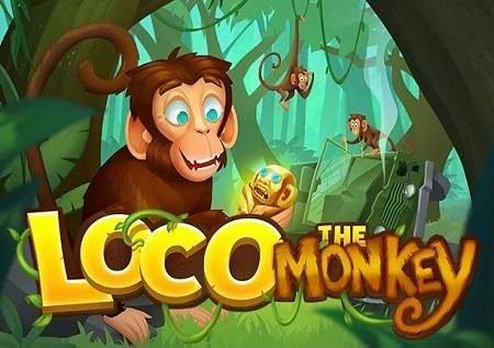 Loco the Monkey inatoa burudani ya kasino mtandaoni!