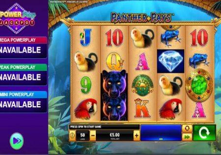 Power Play Panther Pays – uhondo wa kasino katikati ya msitu
