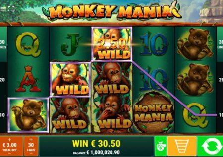 Monkey Mania – sherehe ya sloti ya video katikati ya msitu